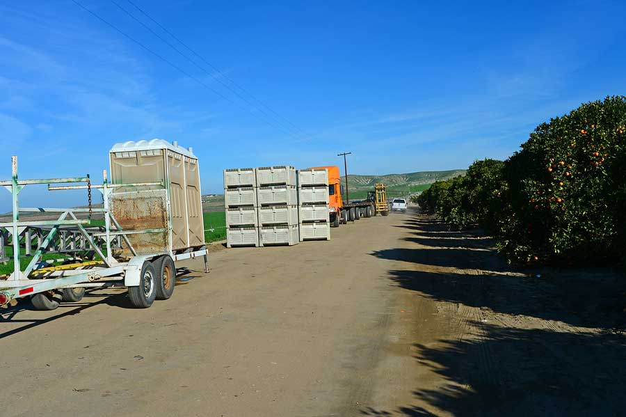 Farm Site with Portable toilets for use.