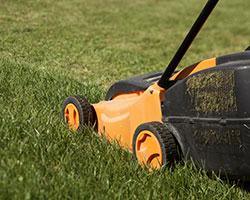 Lawn Care in Navarro County