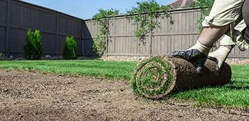 Livingston County Sod Installation