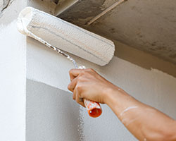 Painters in Collier County